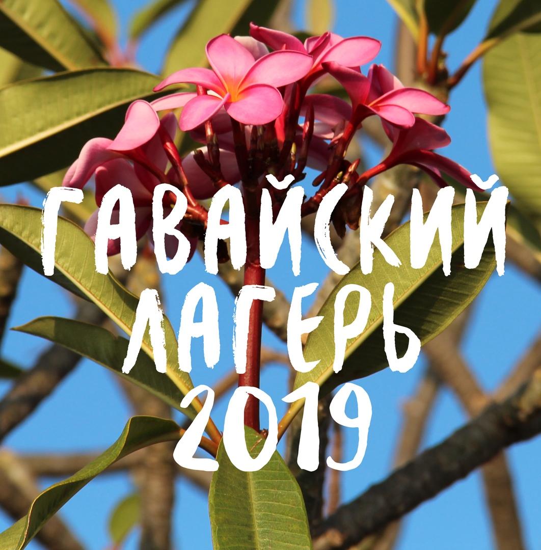 Афиша Нижний Новгород Гавайский лагерь 2019