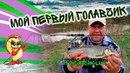 Ловля голавля карпачо и крупных карасей Chub fishing