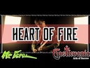 Castlevania: Aria of Sorrow - Heart of Fire || Mr. Feral (Metal Cover)