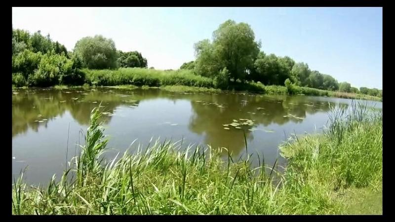 Видео обзор природа и вода г.Карачев.