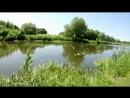 Видео обзор природа и вода г Карачев