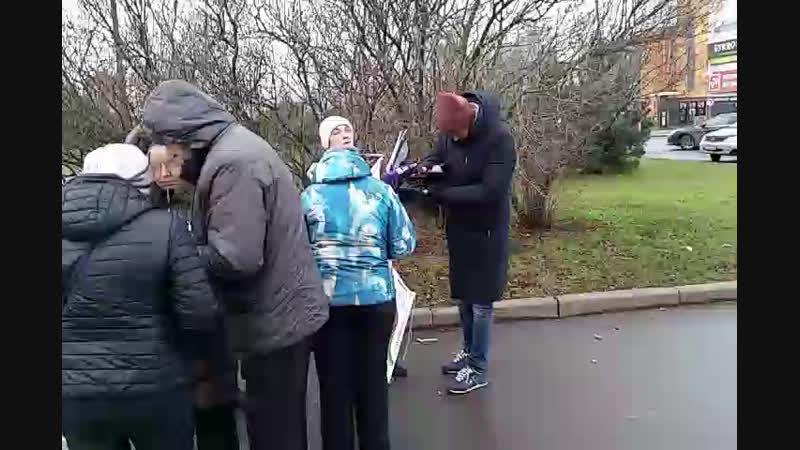 Одиночный пикет у входа в парк Малиновка 18.11.2018 Savemalinovka
