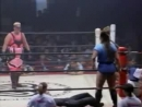 6. Bull Nakano Lioness Aska vs. Aja Kong Reggie Bennett (11.18.95)