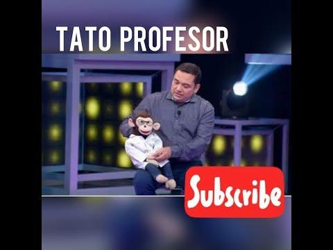 TATO PROFESOR