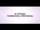 Трейлер к мультфильму Тайная жизнь пингвинов 6