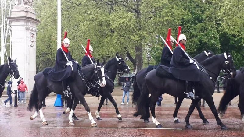 Цок-цок или clip-clop. Смена конного караула у Букингемского дворца.