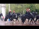 Цок цок или clip clop Смена конного караула у Букингемского дворца