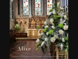 AKADO - Alive (DEMO VERS. 2.1.3) обложка