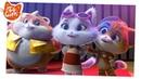 44 Gatti - serie TV | Il momento più gattastico dell'episodio 25 [CLIP]