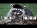 Глад Валакас Я Енотик Полоскун