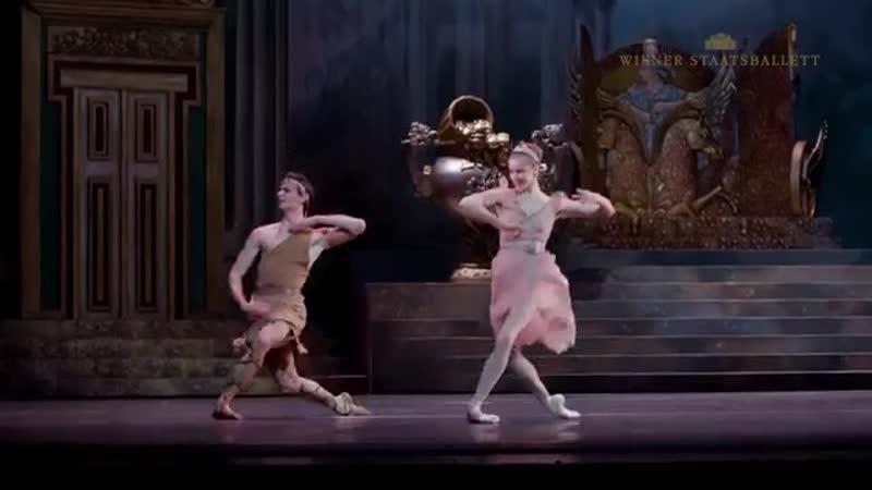 Sylvia, Vienna State Ballet, 24.11.2018 in cinema, 10.11.2018 Premiere (tailer) Сильвия, 24.11.2018 в кино