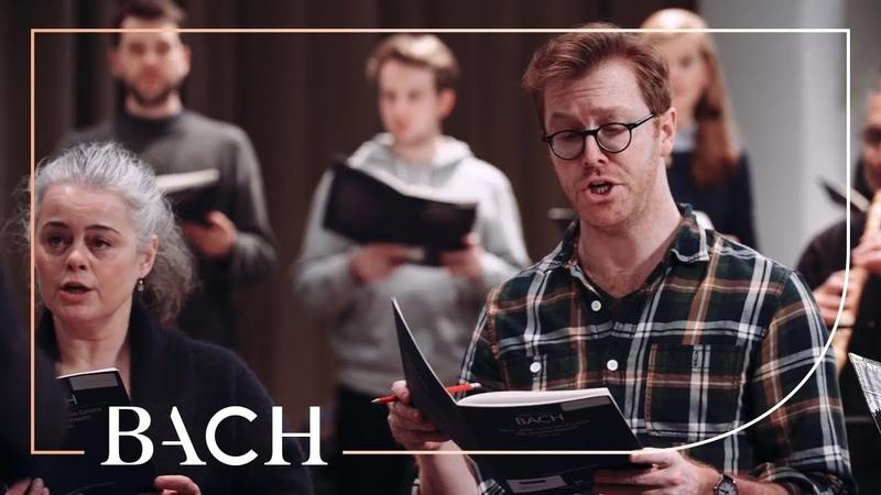 Bach - Nun, ich weiss, du wirst mir stillen from Cantata BWV 105 | Netherlands Bach Society
