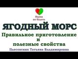 МОРС -  - ПРАВИЛЬНОЕ ПРИГОТОВЛЕНИЕ -  - ЛЕЧЕБНЫЕ СВОЙСТВА