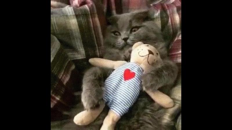 Котейка с мишкой Маринсом