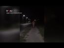 Голый мужик гуляет по Спартановке