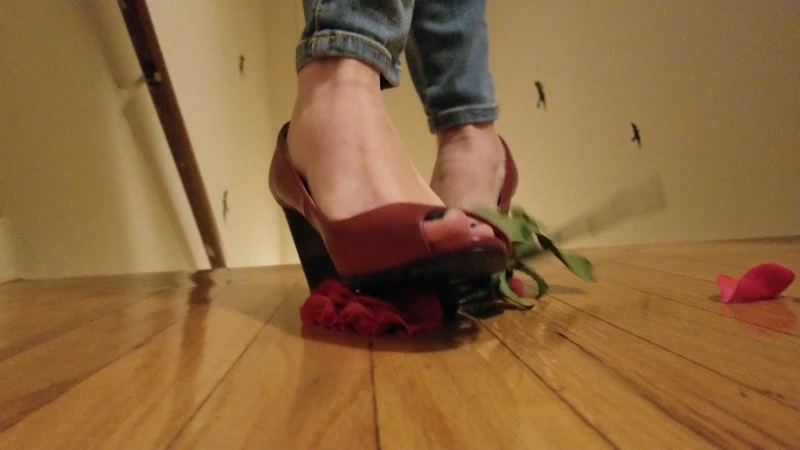 Rose pedals trampled and crushed