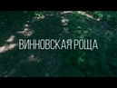Винновская роща с высоты птичьего полета. Ульяновск.
