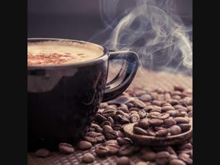5 самых дорогих сортов кофе