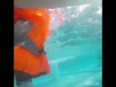 Попки под водой 😂