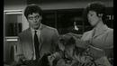 Du Mouron pour les Petits Oiseaux - 1962 ( 2ème Partie )
