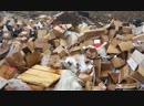 Как разделять мусор