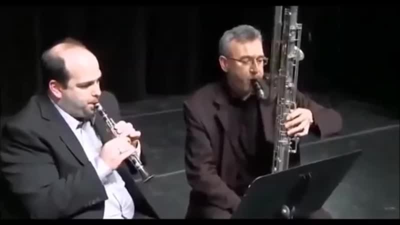 Кларнет пикколо и контрабас - кларнет.