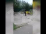 Мужчина с мачете в Тынде