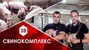 Свинокомплекс частной агрофирмы МЮННТ семьи Монашок с новыми технологиями