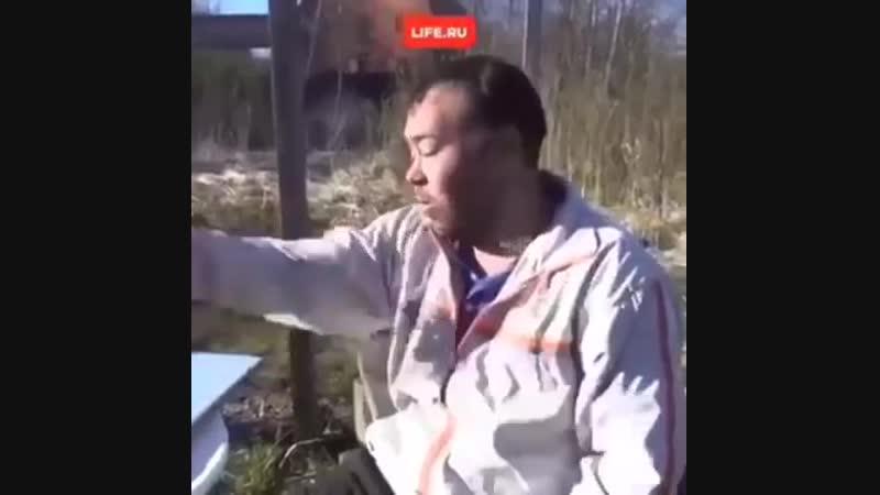 Димон заминированный тапок