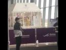 03.04.18 Сынни в аэропорту во Владивостоке, возвращение в Корею