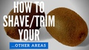How To Shave Trim Your Testicles or Balls Men's Grooming