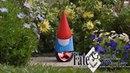 Google Gnome FGO Edition