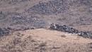 Хуситы отбивают атаку саудитов и хадистов в Сааде.