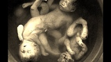 Powerstation Holocaust - Ghastro