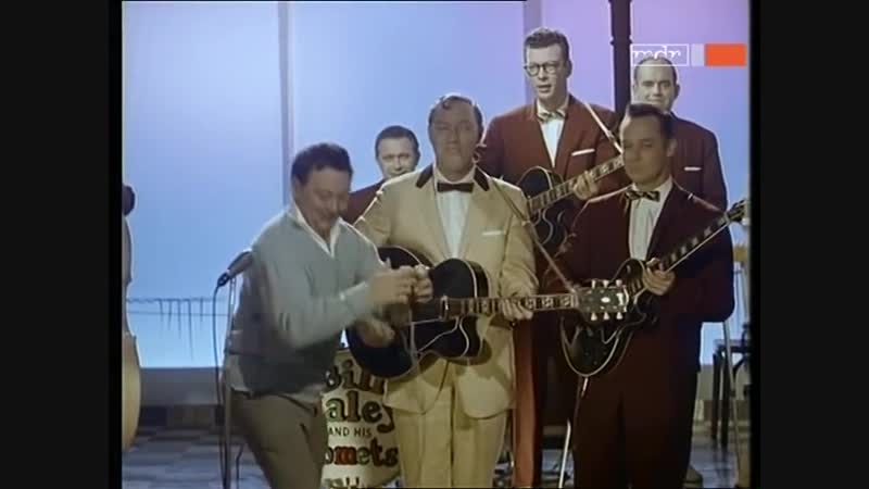 Bill Haley The Comets - Vive Le Rock n Roll