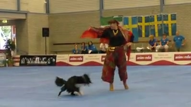 женщина танцует с собакой