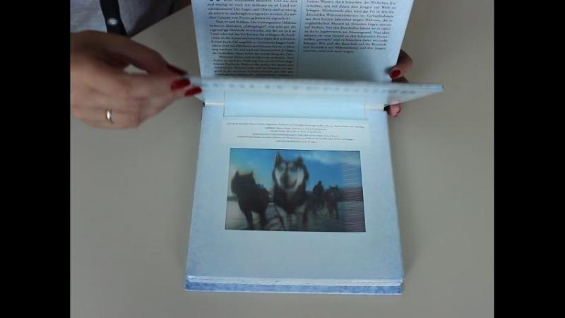 Polar A Photicular Book
