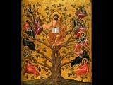 Достоверность Евангелия (Раздел 6) Маловерие Апостолов