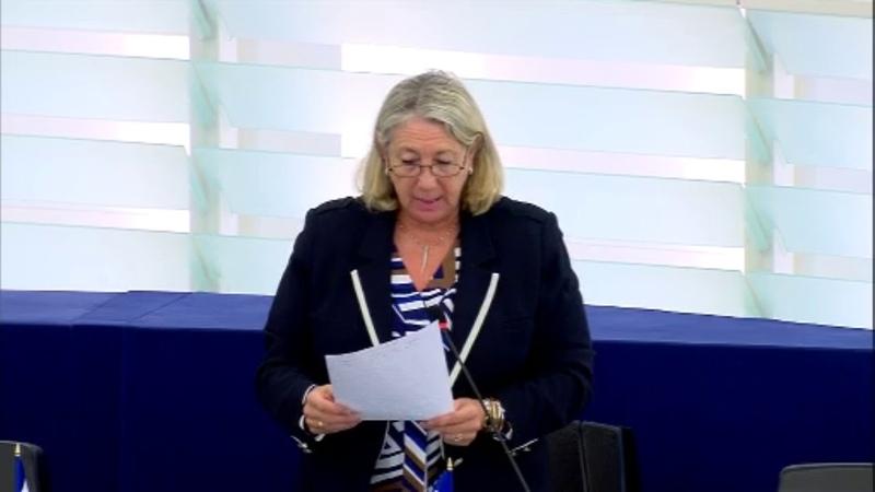 Joëlle Mélin sur le revenu minimum européen