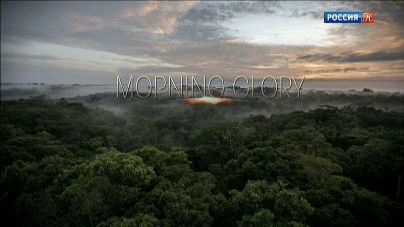 Утреннее сияние 3 серия Бразилия В джунглях Амазонии