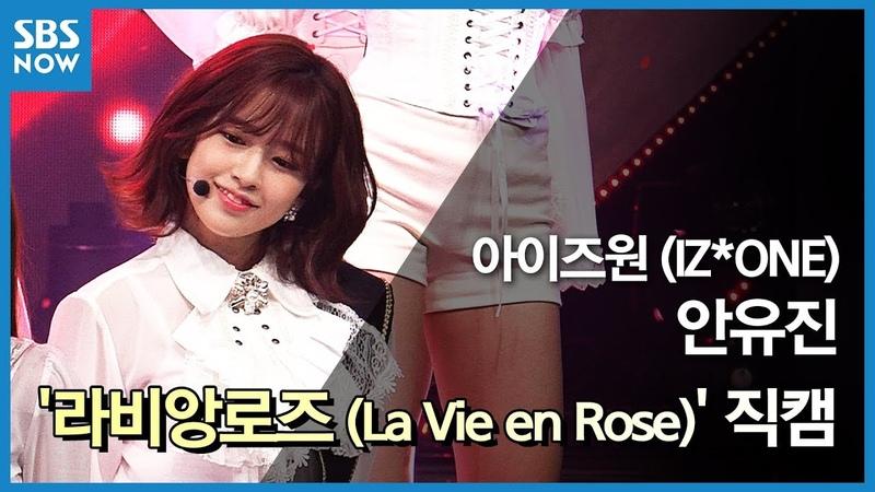 SBS [인기가요] - 아이즈원 '안유진' 라비앙로즈(La Vie en Rose) 직캠 / SBS 'INKIGAYO' IZ*ONE 'An Yujin' FanCam