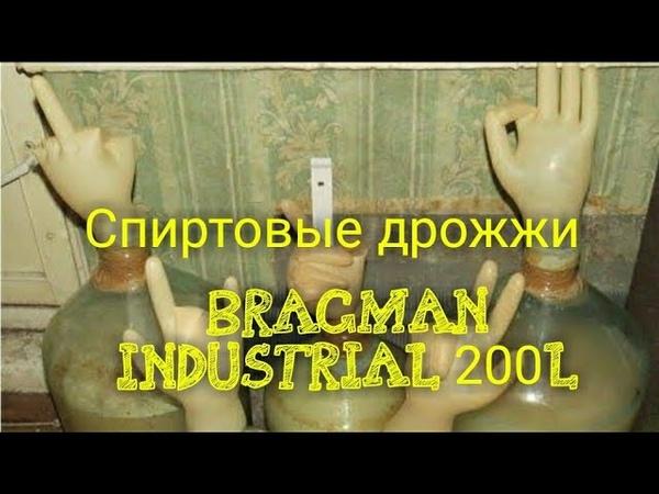 Спиртовые дрожжи BRAGMAN INDUSTRIAL 200L