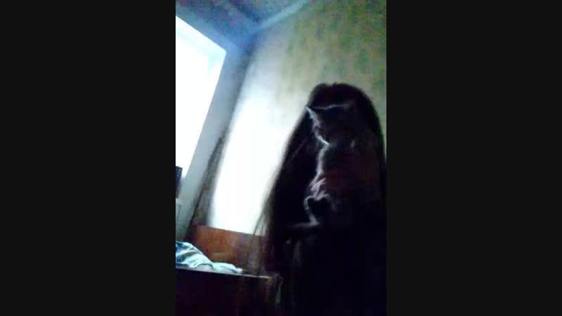 Олег Кошара - Live