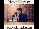 Akmal Xolxodjayev - Hayr Bevafo ( Shoxrux ).mp4