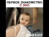 Папа знакомит своего любопытного ребенка с эхо _heart_eyes_ - эхо - малыш - папа - знакомство  ( 750 X 750 ).mp4