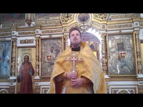 Проповедь иерея Василия Лакомкина в Неделю 24-ю по Пятидесятнице. О гадаринском бесноватом.