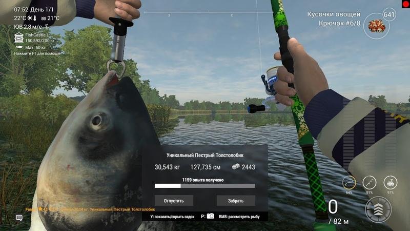 Fishing Planet! v2.1.3 Германия!озеро Зандер Баггер!Толстолобик на матчи!
