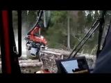 Китайские фирмы поставили в Томскую обла...убке леса (360p).mp4
