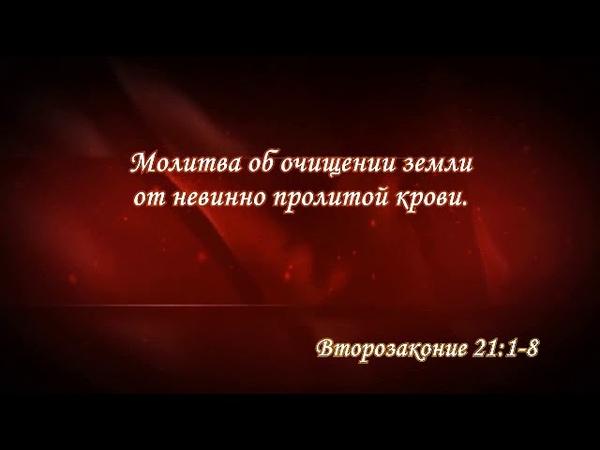 «МАСЕЙ» 5774 ч.2 «Молитва об очищении Его народа от крови невинного» А.Огиенко (26.07.2014)