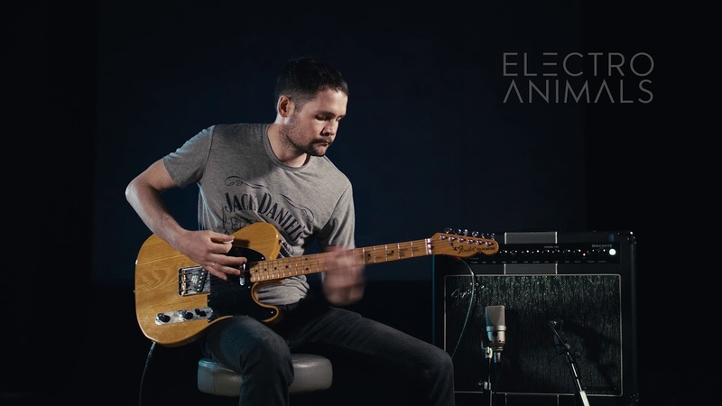 Electro Animals Super Clean Telecaster Set Pickups